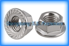 flange nuts DIN6923   HEX FLANGE NUT GB6177 Hexagon nuts with flange   FLANSCH